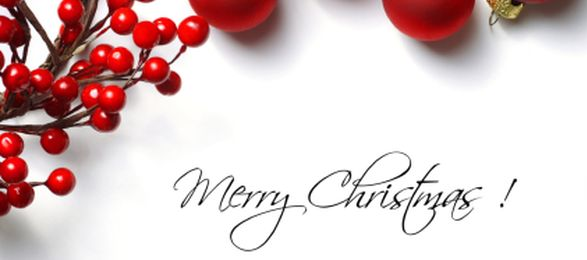 Merry Christmas and a very Prosperous New Year!