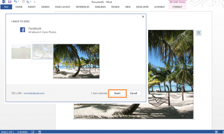 Using images from Social Media in Office Documents
