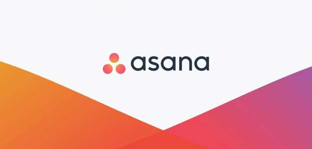 How to Use Asana's Features for Better Organisation